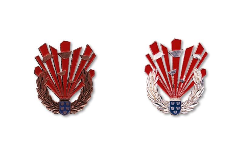 NÖ Landesfeuerwehrverband - Sprengdienstleistungsabzeichen